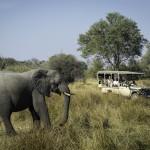 Kwai Camp - Safari Vehicle & Elephant