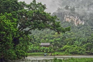 Discover village life in lush Vietnamese mountains