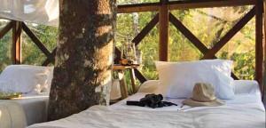 Reserva Amazonica Tree House