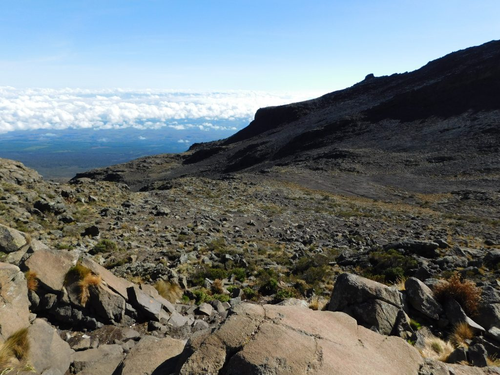 Kilimanjaro Trek Rongai Route