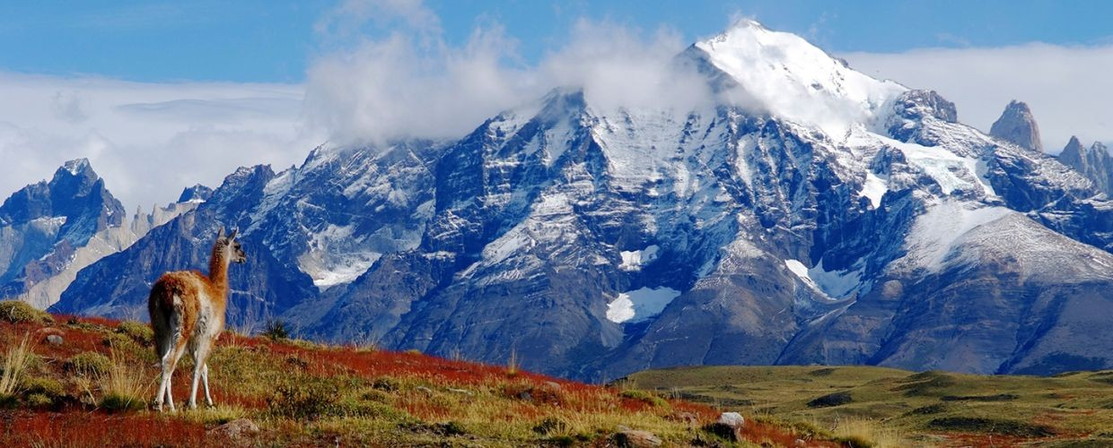 Explore the majestic beauty of Torres del Paine
