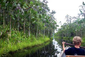 3-Day Muyuna Lodge Iquitos Amazon Lodge Excursion