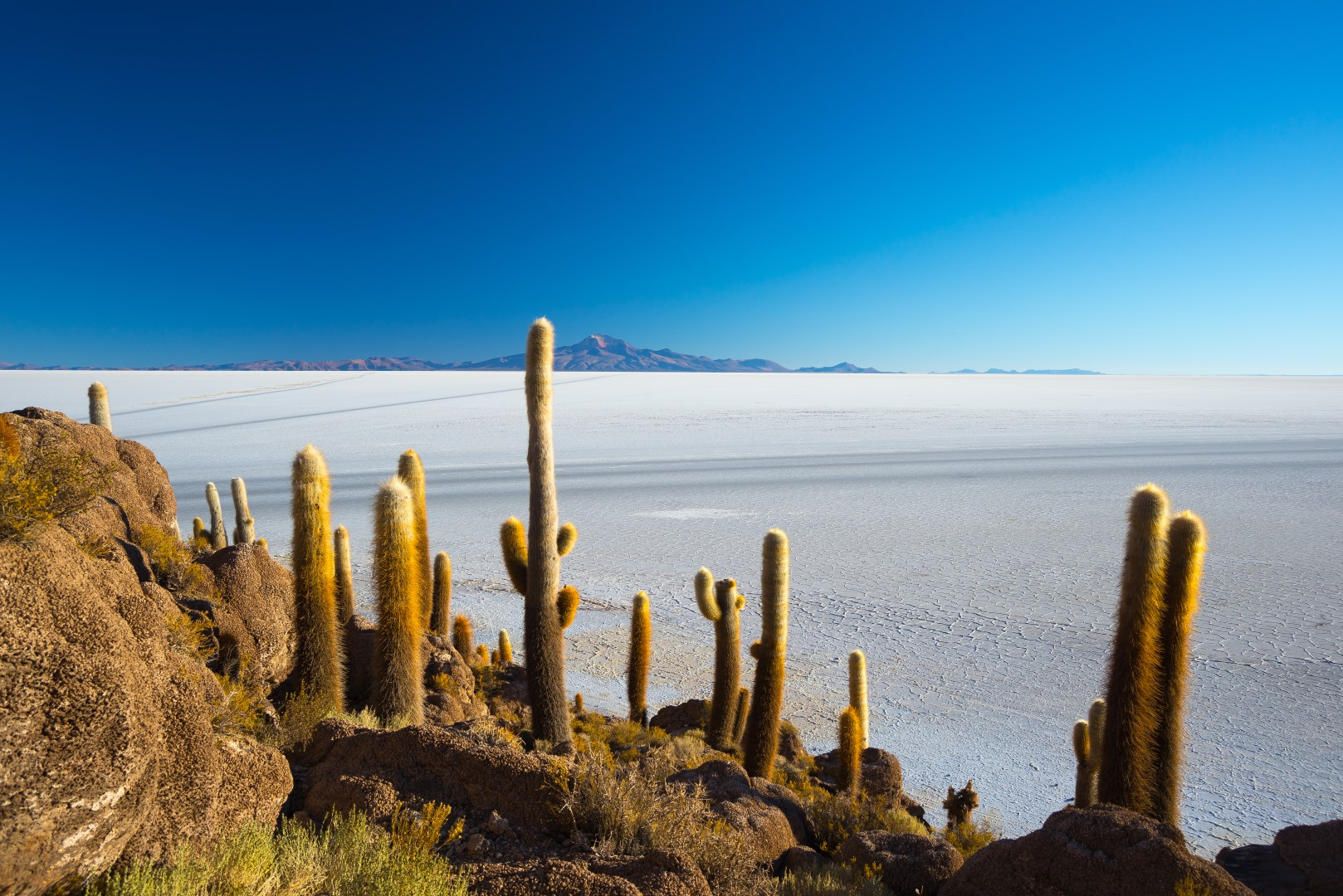 /wp-content/uploads/itineraries/Bolivia/Best of Bolivia/day 7 (Large).jpg