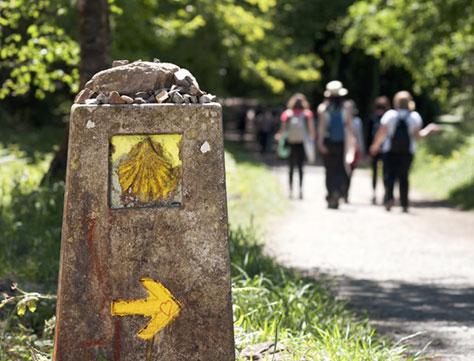 /wp-content/uploads/itineraries/Camino/camino-port-3-trail.jpg