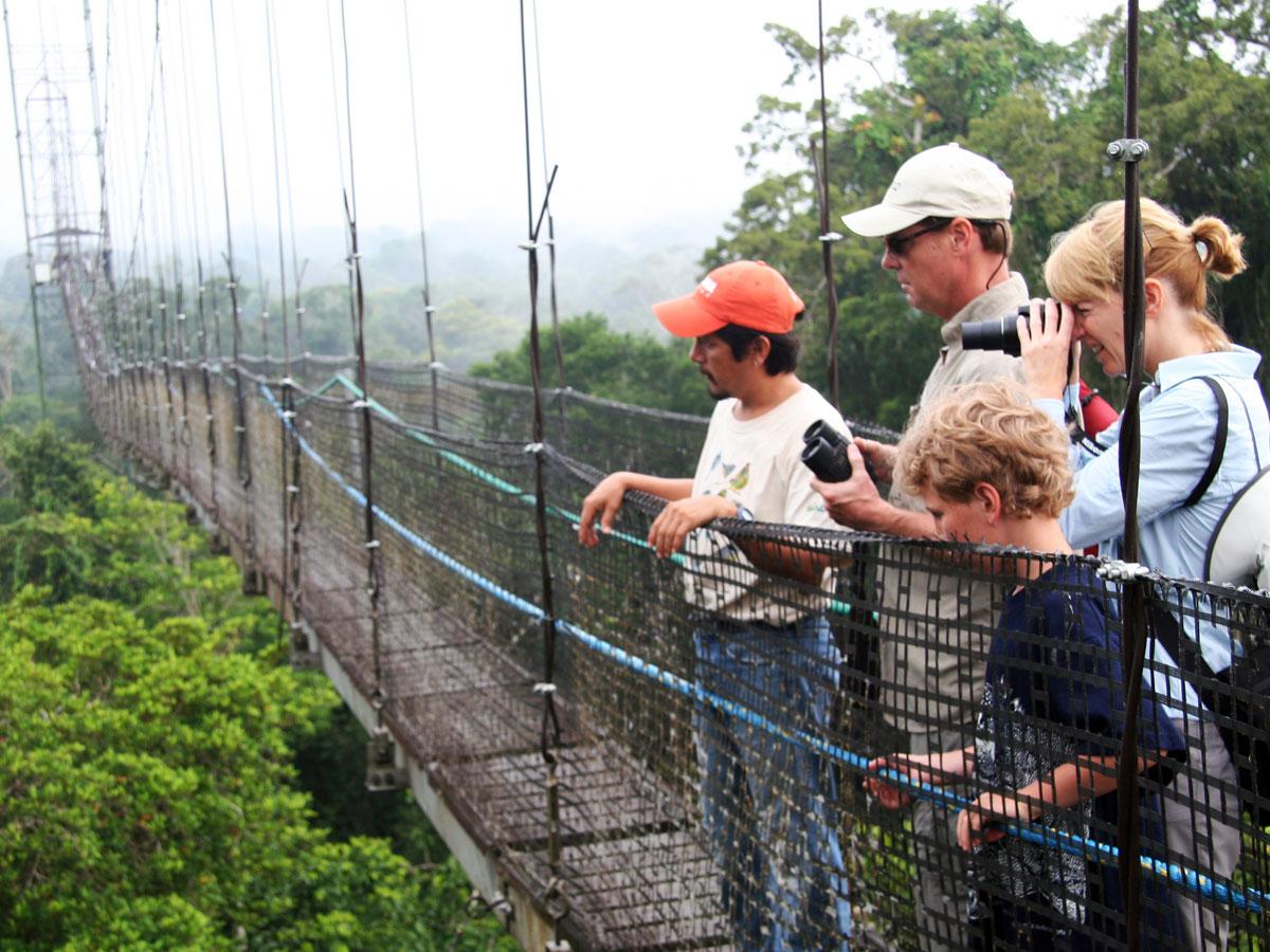/wp-content/uploads/itineraries/Ecuador/amazon-canopy.jpg