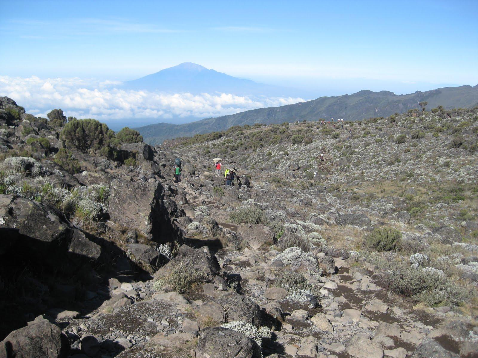 /wp-content/uploads/itineraries/Kilimanjaro/kili-machame-day3.jpg