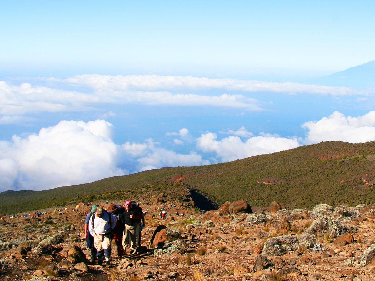 /wp-content/uploads/itineraries/Kilimanjaro/kili-machame-day4.jpg
