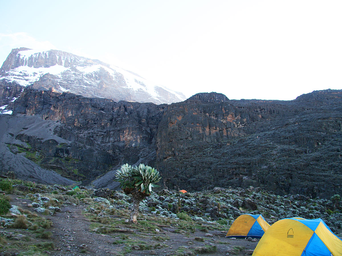 /wp-content/uploads/itineraries/Kilimanjaro/kili-machame-shira-camp.jpg