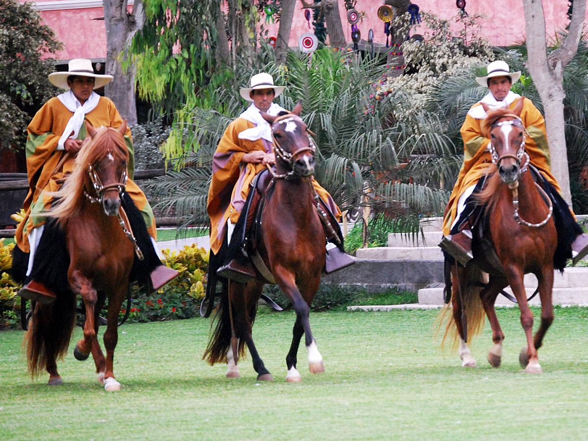 /wp-content/uploads/itineraries/Peru/peru-paso-horse-2.jpg