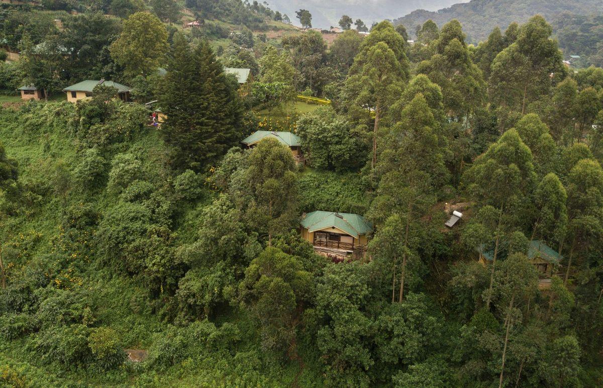 /wp-content/uploads/lodging/Uganda/gorilla-safari-lodge-outside-2.jpg