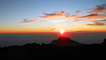 1-Day Short Kilimanjaro Trek