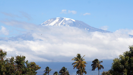 2-Day Short Kilimanjaro Trek