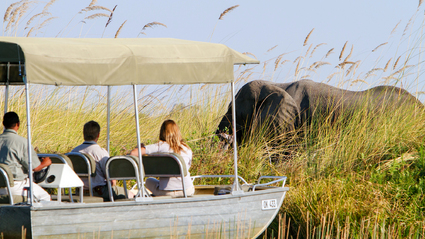 9-Day Botswana Safari and Victoria Falls