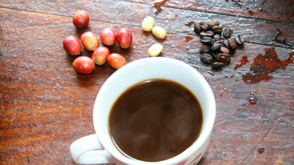 1-Day Coffee Plantation and Local Village Visit