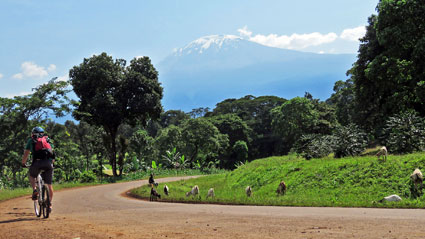 6-Day Kilimanjaro Biking Safari