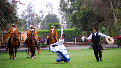 1-Day Peruvian Paso Horse Show in Lima