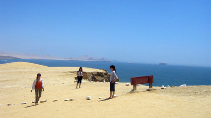1-Day Paracas and Ballestas Day Tour