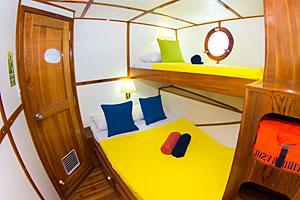 Galapagos Danubio Azul Cabin