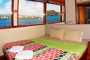 Galapagos Humboldt Explorer Cabin