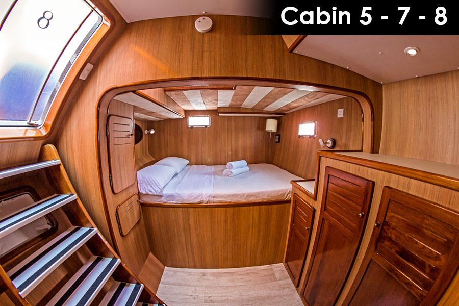Galapagos Nemo III Cabin