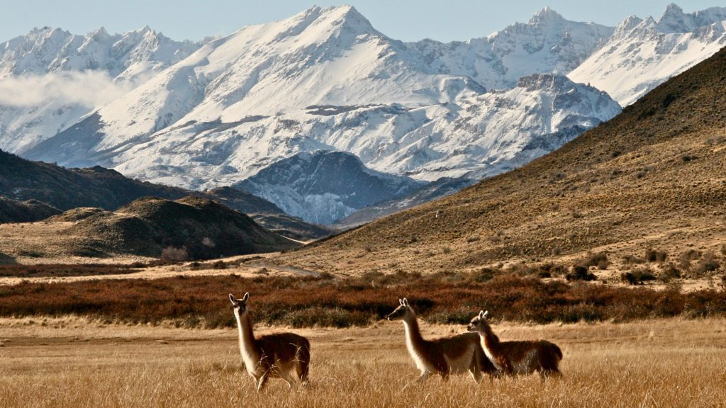 8-Day Remote Trails Aysen and Patagonia Park