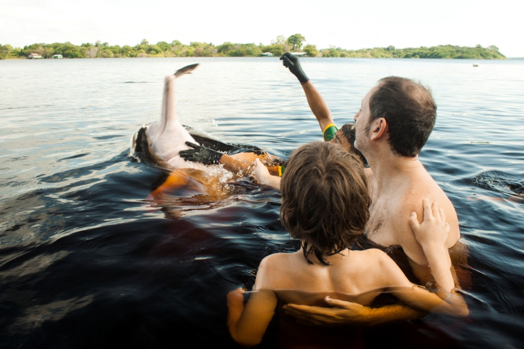 wp-content/uploads/itineraries/Brazil/manati-pink-dolphins-1.jpg