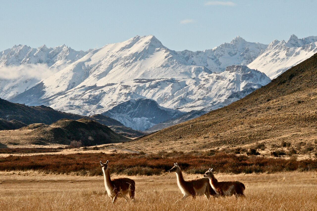 wp-content/uploads/itineraries/Chile/Aysen 3 Patagonia Park.jpg