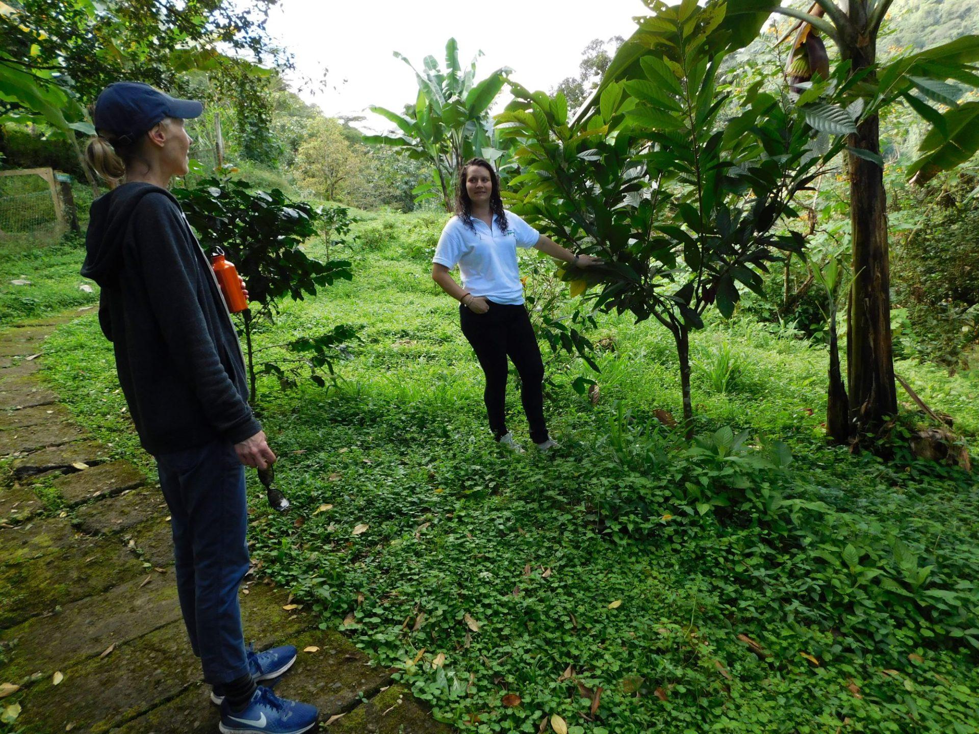 wp-content/uploads/itineraries/Costa-Rica/Day3OTGRanchoMargotfarmtour.jpg
