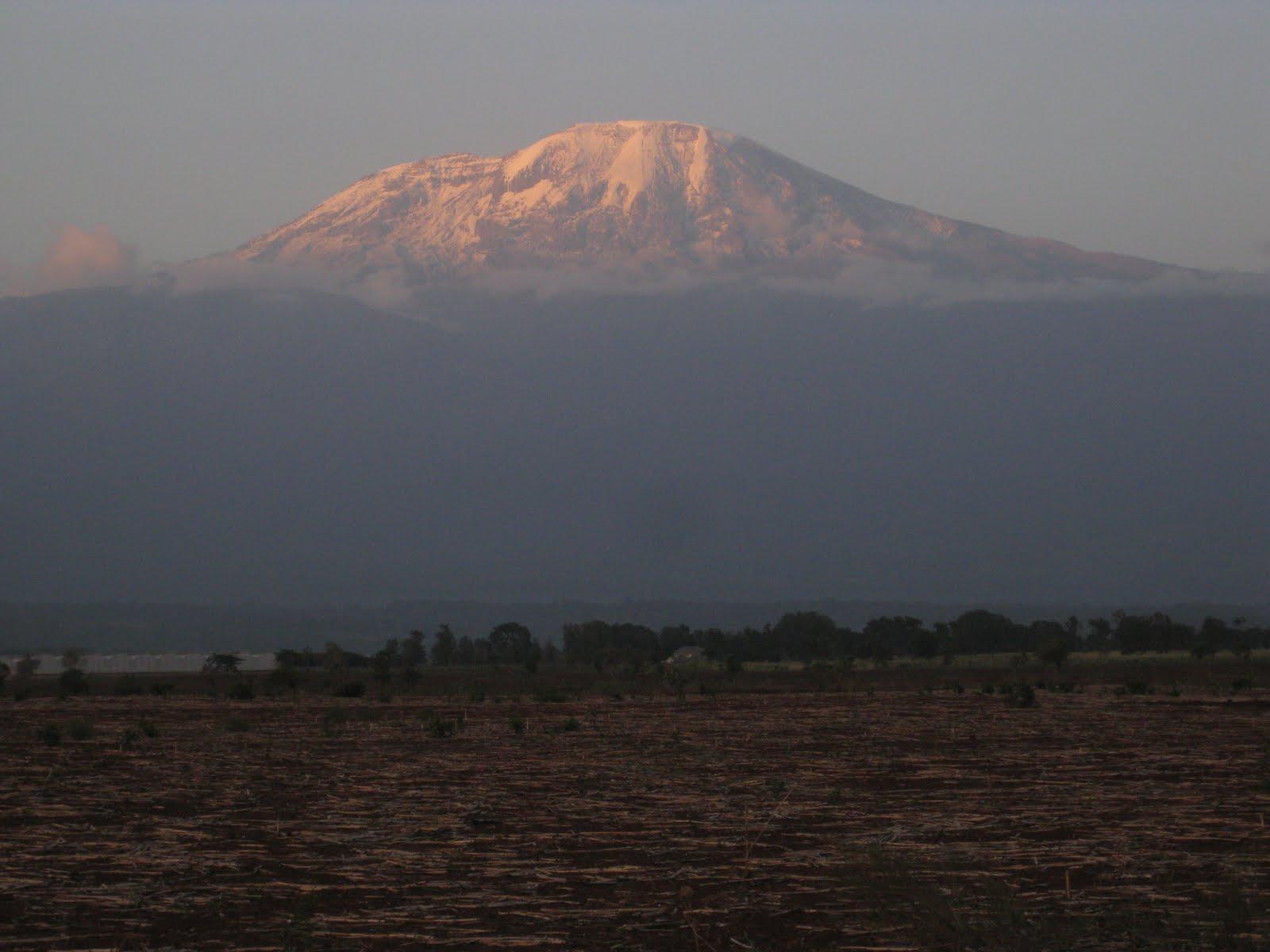 wp-content/uploads/itineraries/Kilimanjaro/kili-mountain.jpg