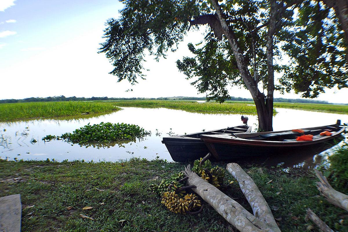 wp-content/uploads/itineraries/Peru/amazon-boats.jpg