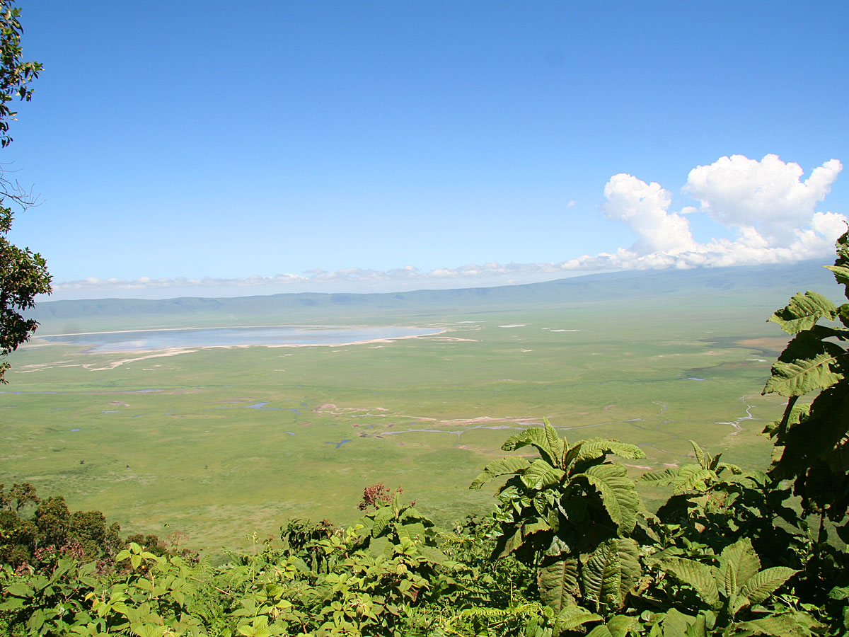 wp-content/uploads/itineraries/Safari/safari-ngorongoro (1).jpg
