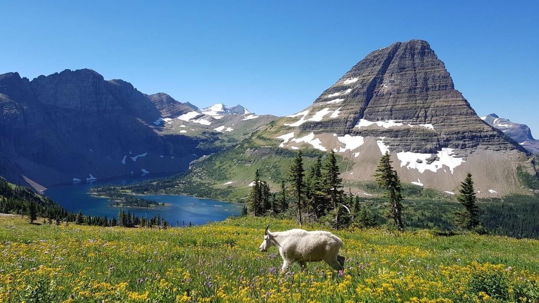 wp-content/uploads/itineraries/USA/WyMt/Glacier-3.jpg