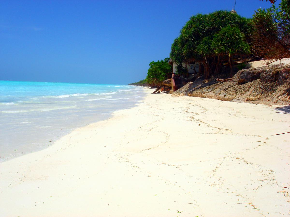 wp-content/uploads/itineraries/Zanzibar/znz_beach093006_1.jpg